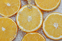 Fresh water drops on oranges Royalty Free Stock Photo