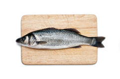 Fresh water fish on a cutting board isolated Royalty Free Stock Photography