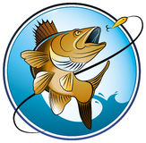 Fresh-water-fishing. A color illustration/symbol of a fresh water fish jumping out of water to catch a bait Royalty Free Stock Image