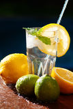 Fresh water with lemon, lime, mint and water splashes Stock Photo