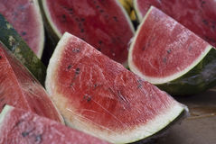 Fresh water melon slices Stock Image