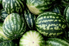 Fresh water-melons Royalty Free Stock Photos