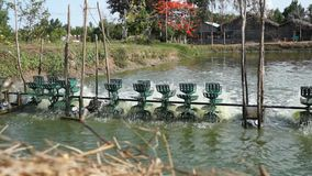 Fresh Water Oxygen Aerator. Fill pond with with fresh air stock video
