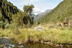Fresh water river against a mountain background. A fresh water river against a mountain background at Rwenzori Mountains National Park, Kasese District, Uganda stock photo
