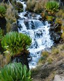 Fresh water river against a volcanic rock formations, Mount Kenya. A fresh water river in the volcanic rock formations at Mount Kenya, waterfall, hike, trek royalty free stock images