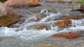 Fresh water river white water high definition. Fresh water mountain river scene with rapid flowing fresh rain water and large boulders, panning camera high stock video