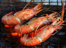 Fresh water shrimp grilled on fire Stock Image