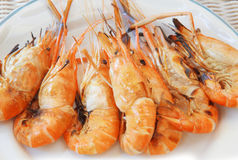 Fresh water shrimp grilled on fire ready to eat on white dish Stock Photography