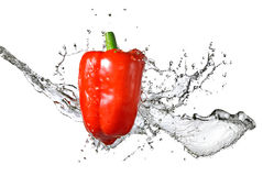 Fresh water splash on red pepper Stock Photo