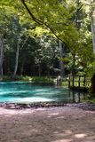 Fresh water Springs Florida USA with beautiful blue clear water royalty free stock image