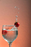 Fresh water with strawberry in glass. Photograph of fresh strawberry with water and glass Royalty Free Stock Photography
