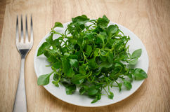Fresh watercress Stock Images