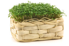 Fresh watercress in a woven basket Stock Photography