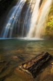Fresh waterfall. In the forest Royalty Free Stock Image