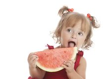 Fresh Watermelon. Stock Image