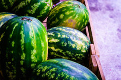 Fresh Watermelon On a District Bazaar Royalty Free Stock Photo