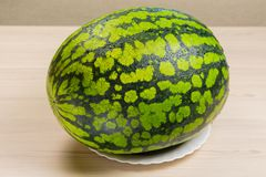 Fresh watermelon, fabric background,ripe striped melon on a white table,close-up of fresh watermelon red lying on a Royalty Free Stock Photography