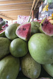 Fresh watermelon Stock Image