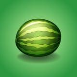 Fresh watermelon on green background Stock Photo