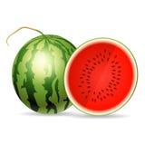 Fresh watermelon isolated on white background Royalty Free Stock Photo