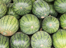 Fresh watermelon pile Royalty Free Stock Photos