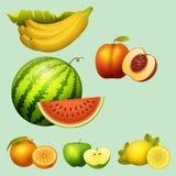 Fresh watermelon realistic juicy fruits slice apple vector illustration slice green isolated ripe melon. Fresh watermelon fruits slice realistic juicy apple Royalty Free Stock Photo
