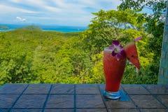 Fresh watermelon shake and panorama view stock image