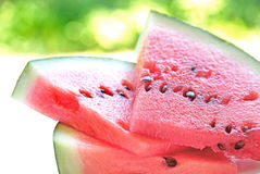 Fresh watermelon slice Stock Photo