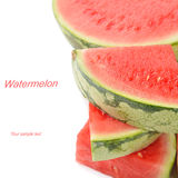 Fresh watermelon Stock Image