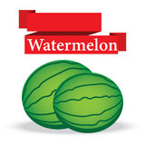 Fresh watermelon  on white background vector Royalty Free Stock Photo