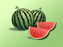 Fresh watermelons stock image