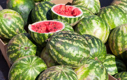 Fresh watermelons for sale at the farmers market Royalty Free Stock Photography