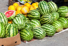 Fresh watermelons for sale at the local market Royalty Free Stock Photos