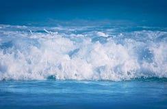 Fresh wave Stock Photography