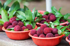 Fresh waxberry in the basket. Heap of fresh waxberry in the basket Stock Images