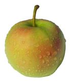 Fresh And Wet Apple Royalty Free Stock Photos