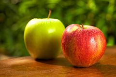 Fresh and wet apples Stock Images