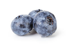 Fresh wet blueberries isolated Royalty Free Stock Photography