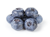 Fresh wet blueberries isolated Stock Images