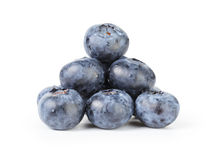 Fresh wet blueberries isolated Royalty Free Stock Image