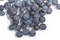 Fresh wet Blueberries. On white background Stock Photos