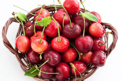Fresh wet cherry in a basket Stock Images