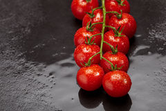 Fresh and wet cherry tomatoes Stock Image