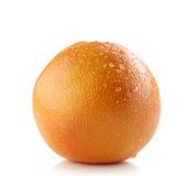 Fresh wet grapefruit Stock Image
