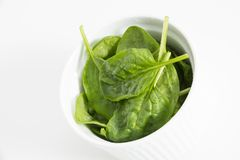 Fresh wet green baby spinach leaves in a bowl, closeup on white background. Fresh wet green baby spinach leaves in a bowl, closeup on white background Stock Images