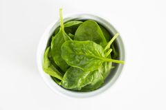 Fresh wet green baby spinach leaves, closeup on white background. Fresh wet green baby spinach leaves, closeup on white background Stock Photo