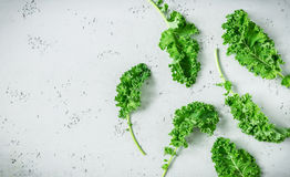 Fresh wet green kale leaves on grey background Royalty Free Stock Photography