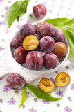 Fresh wet plums with leaves in the bowl Stock Image