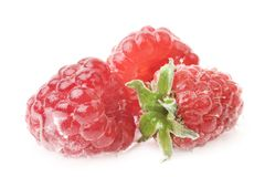 Fresh wet raspberry isolated Stock Photo