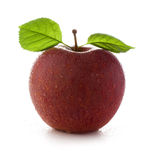 Fresh and wet red apple Stock Images